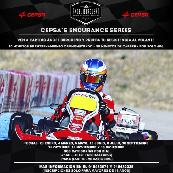 Endurance series (FILEminimizer)
