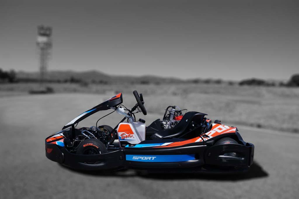Rotax 2T 125cc